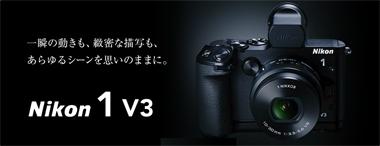 n1v3_01.jpg