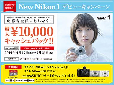 nn1_campaign.jpg